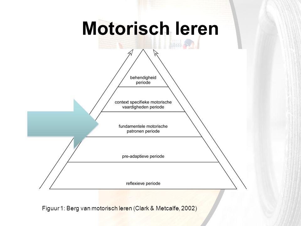 Motorisch leren Figuur 1: Berg van motorisch leren (Clark & Metcalfe, 2002)