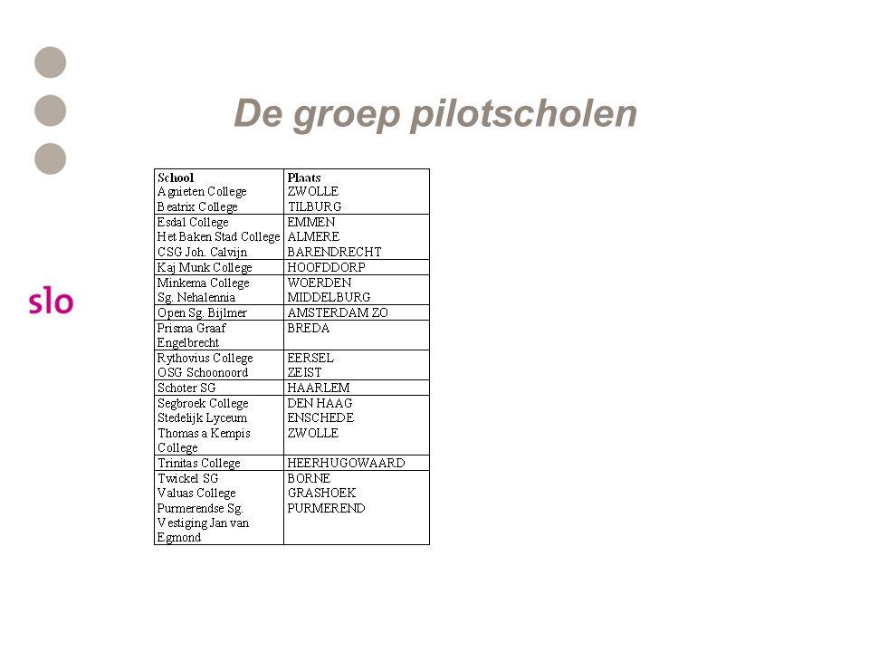 De groep pilotscholen