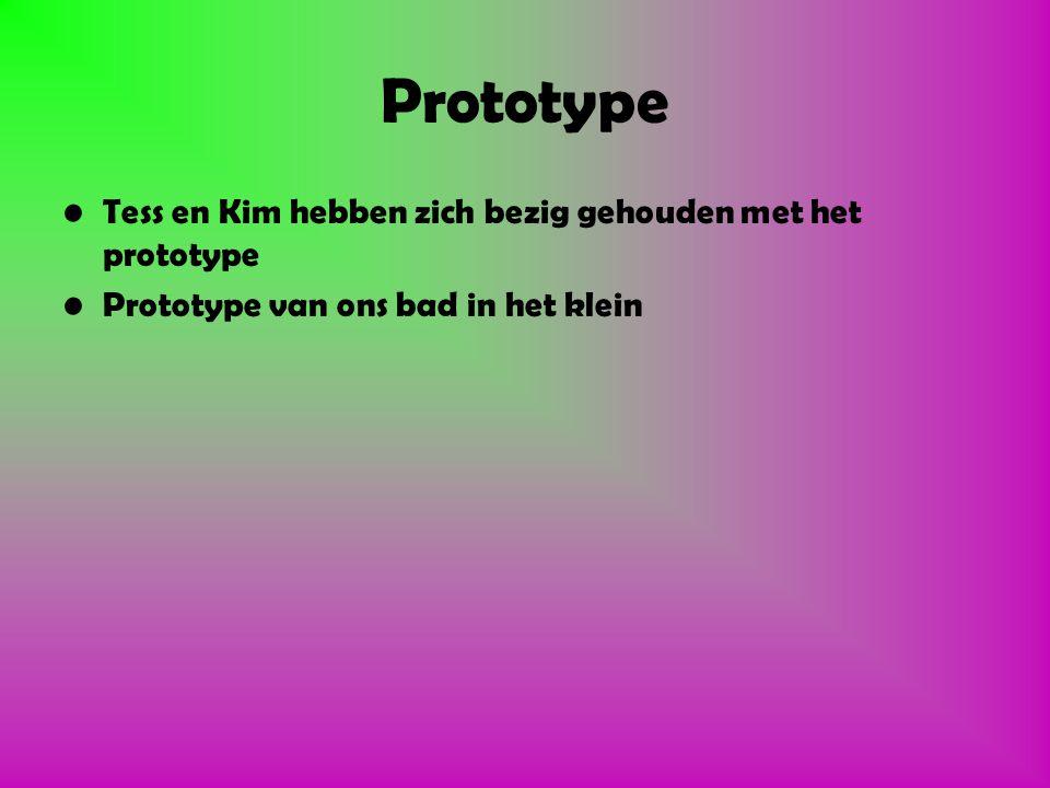 Hoe hebben wij het gedaan 1.Groepjes (Maarten,Tess,Kim en Orlando). 2.Brainstormen over wat we wisten. 3.Prototype gemaakt 4.Site aangemaakt 5.PowerPo