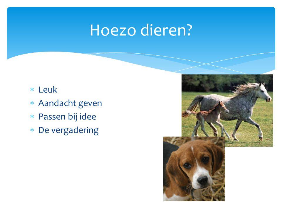  Leuk  Aandacht geven  Passen bij idee  De vergadering Hoezo dieren?