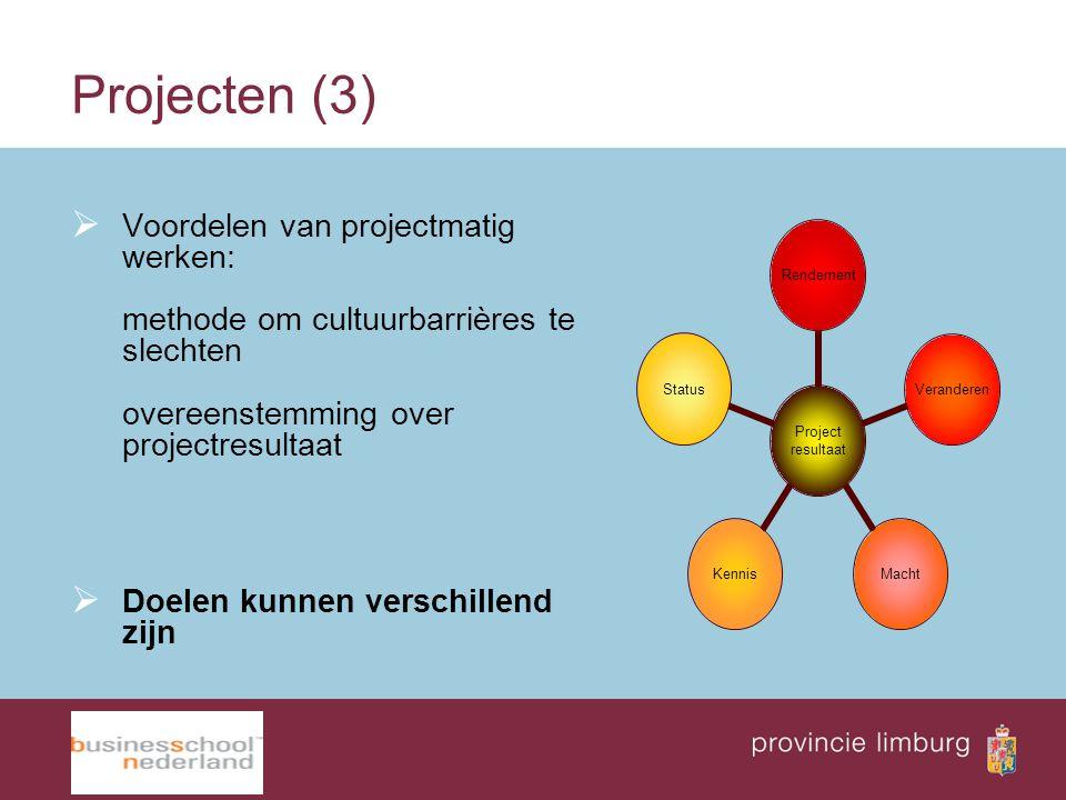 Projecten (3)  Voordelen van projectmatig werken: methode om cultuurbarrières te slechten overeenstemming over projectresultaat  Doelen kunnen versc