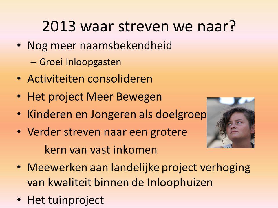 2013 waar streven we naar.
