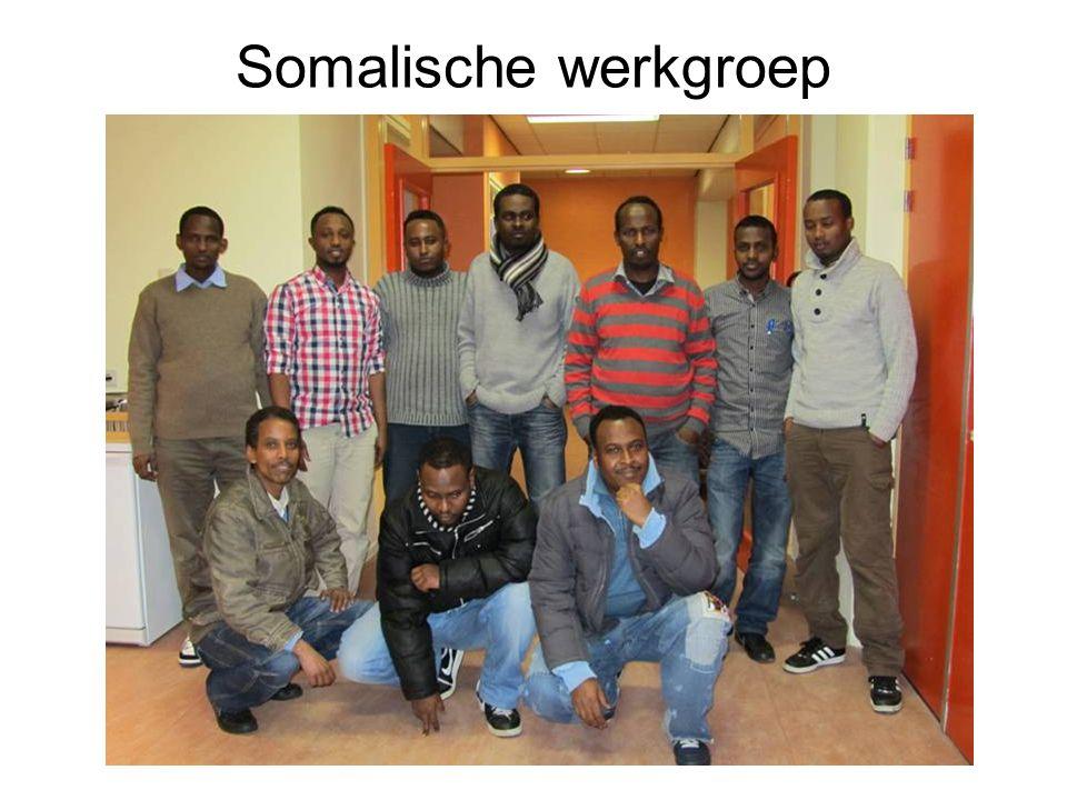 Somalische werkgroep