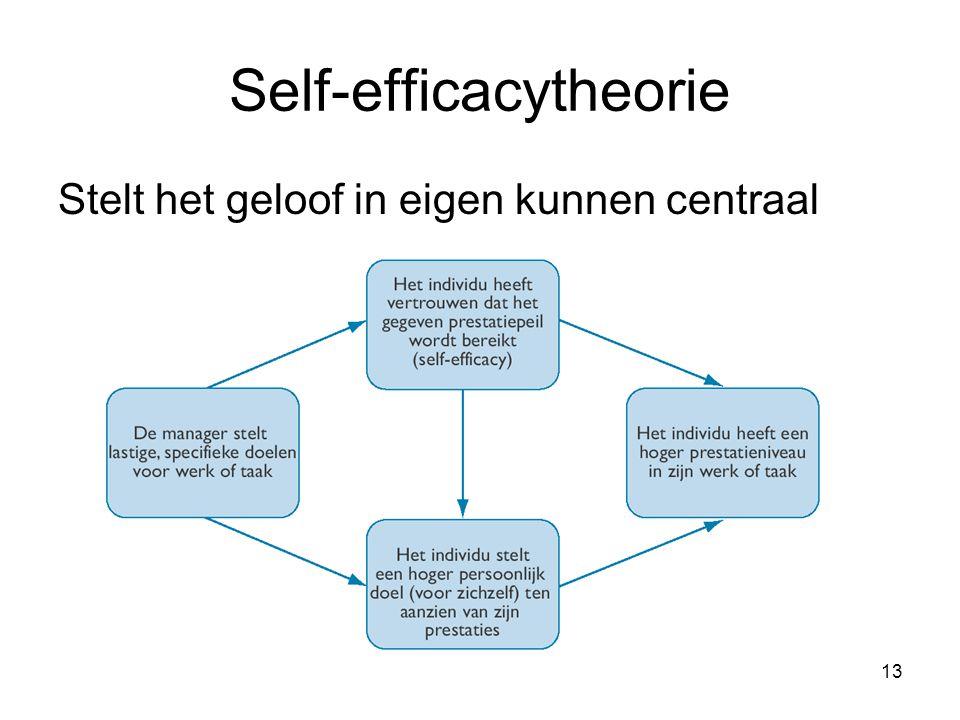 13 Self-efficacytheorie Stelt het geloof in eigen kunnen centraal