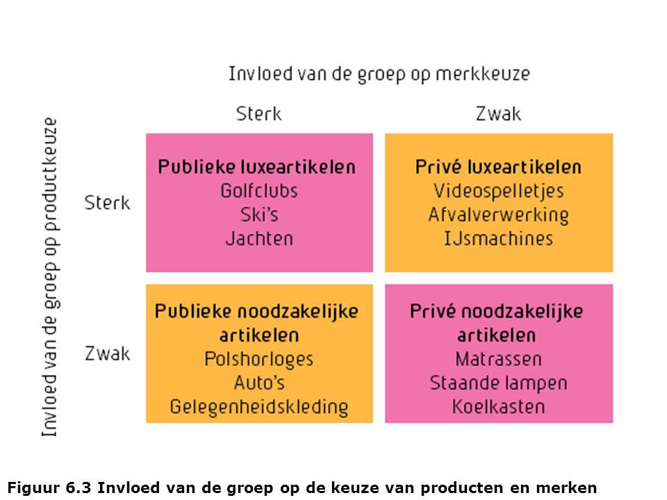 Figuur 6.3 Invloed van de groep op de keuze van producten en merken