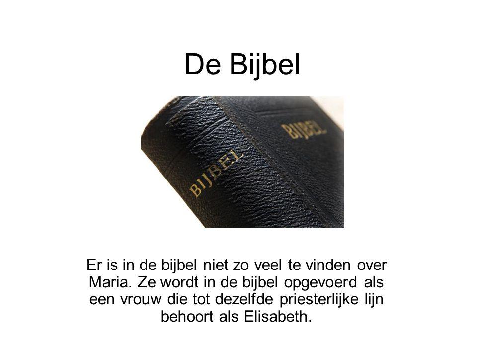 De Bijbel Er is in de bijbel niet zo veel te vinden over Maria. Ze wordt in de bijbel opgevoerd als een vrouw die tot dezelfde priesterlijke lijn beho