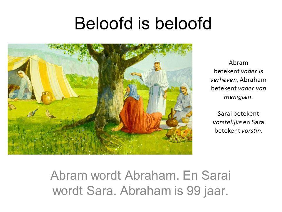 Beloofd is beloofd Abram wordt Abraham. En Sarai wordt Sara. Abraham is 99 jaar. Abram betekent vader is verheven, Abraham betekent vader van menigten