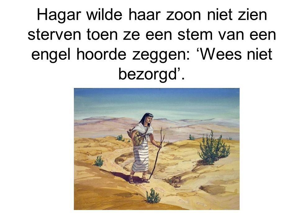 God beschermde Ismael. Hij leefde als boogschutter in de woestijn.