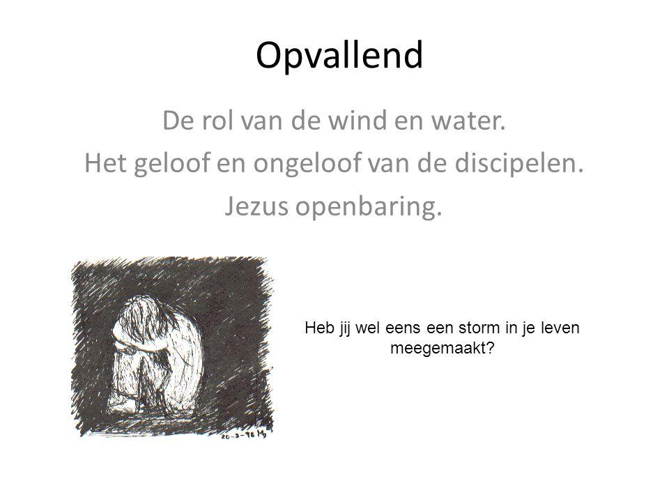 Opvallend De rol van de wind en water.Het geloof en ongeloof van de discipelen.