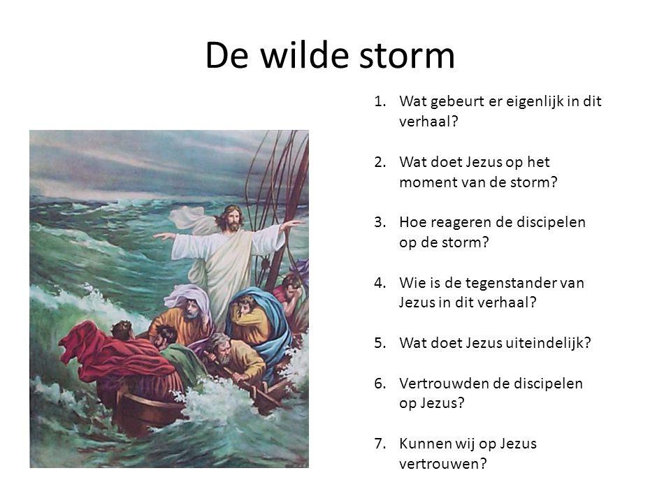 De wilde storm 1.Wat gebeurt er eigenlijk in dit verhaal? 2.Wat doet Jezus op het moment van de storm? 3.Hoe reageren de discipelen op de storm? 4.Wie