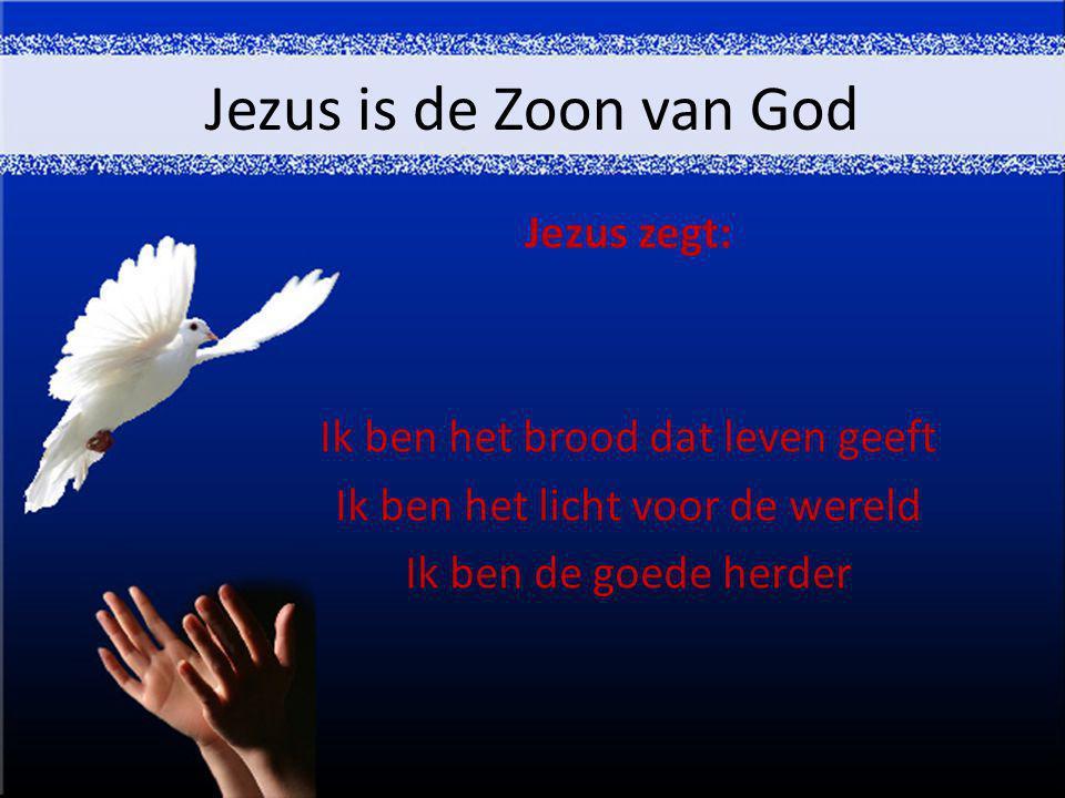 Jezus is de Zoon van God Jezus zegt: Ik ben het brood dat leven geeft Ik ben het licht voor de wereld Ik ben de goede herder