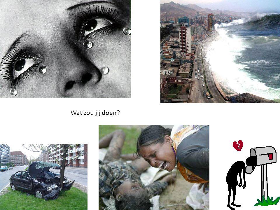 Wat zou jij doen?