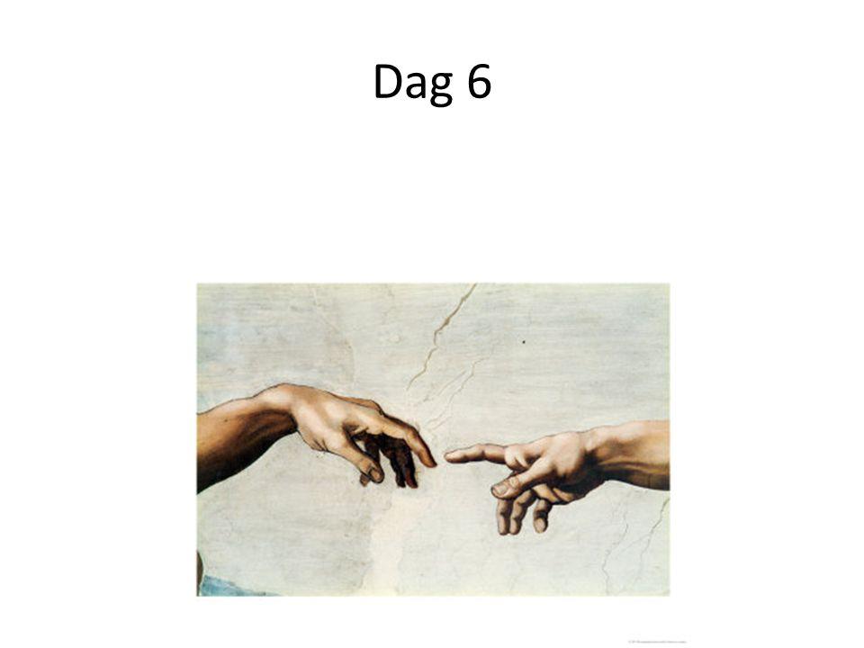 Dag 6