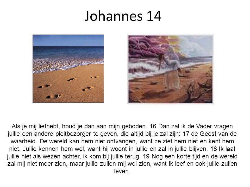 Johannes 14 Als je mij liefhebt, houd je dan aan mijn geboden. 16 Dan zal ik de Vader vragen jullie een andere pleitbezorger te geven, die altijd bij