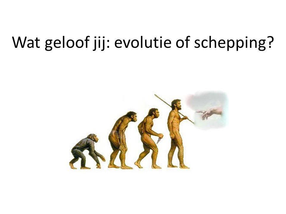 Wat geloof jij: evolutie of schepping?