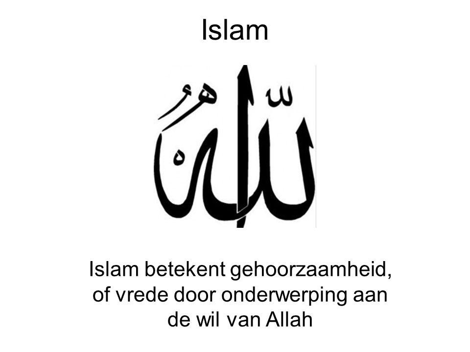 5 zuilen Moslims leven volgens vijf zuilen : 1.