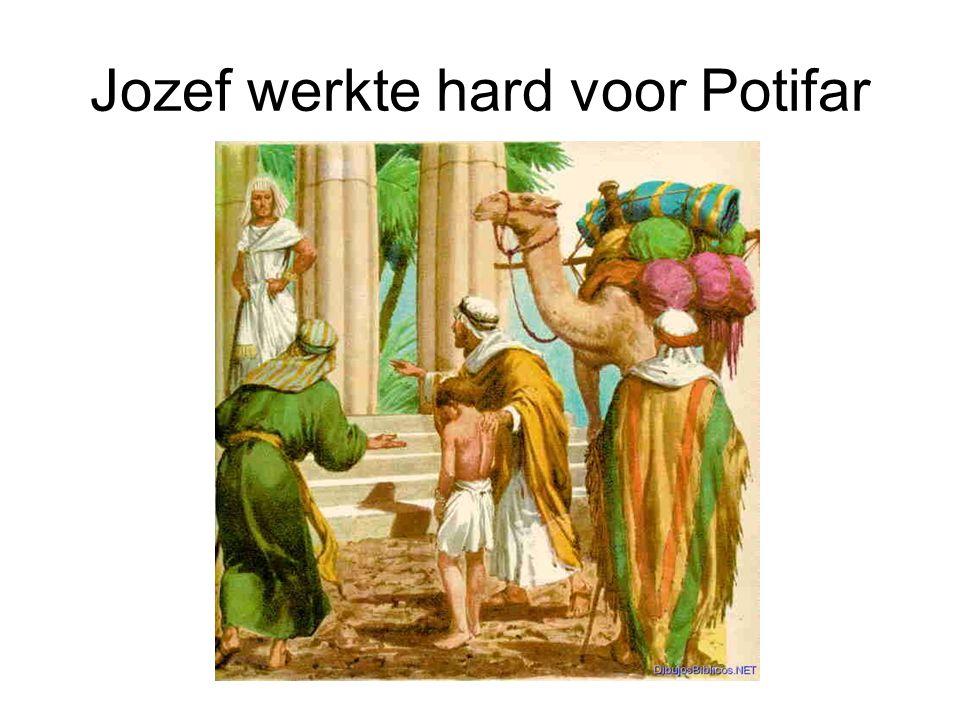 Jozef werkte hard voor Potifar