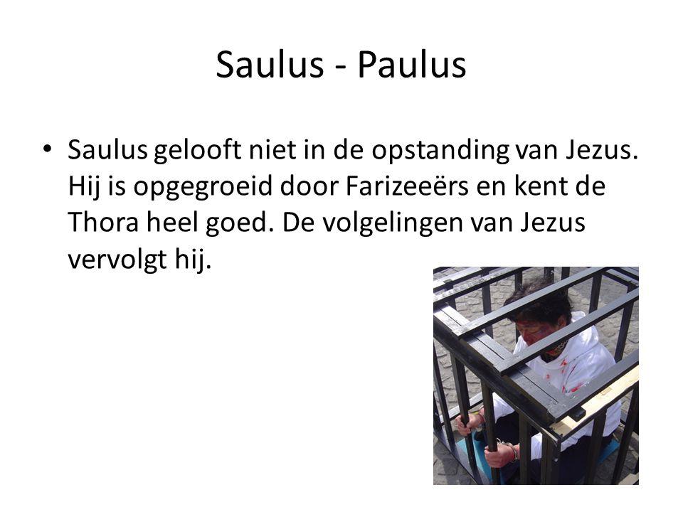 Saulus - Paulus Saulus gelooft niet in de opstanding van Jezus. Hij is opgegroeid door Farizeeërs en kent de Thora heel goed. De volgelingen van Jezus