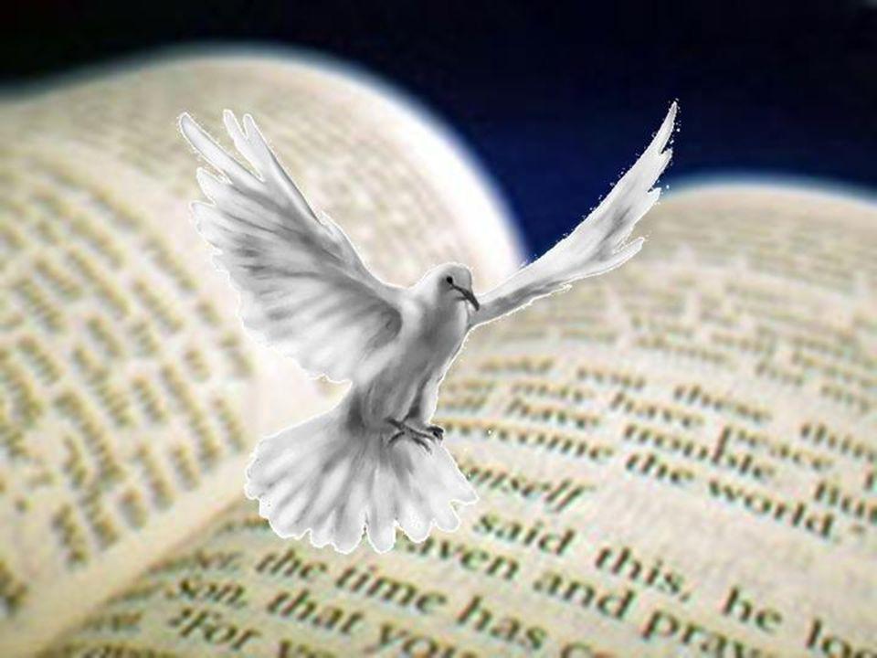 De uitstorting van de Heilige Geest zorgde voor: Nieuwe talen Nieuwe vrijmoedigheid Nieuwe kracht Pinksteren