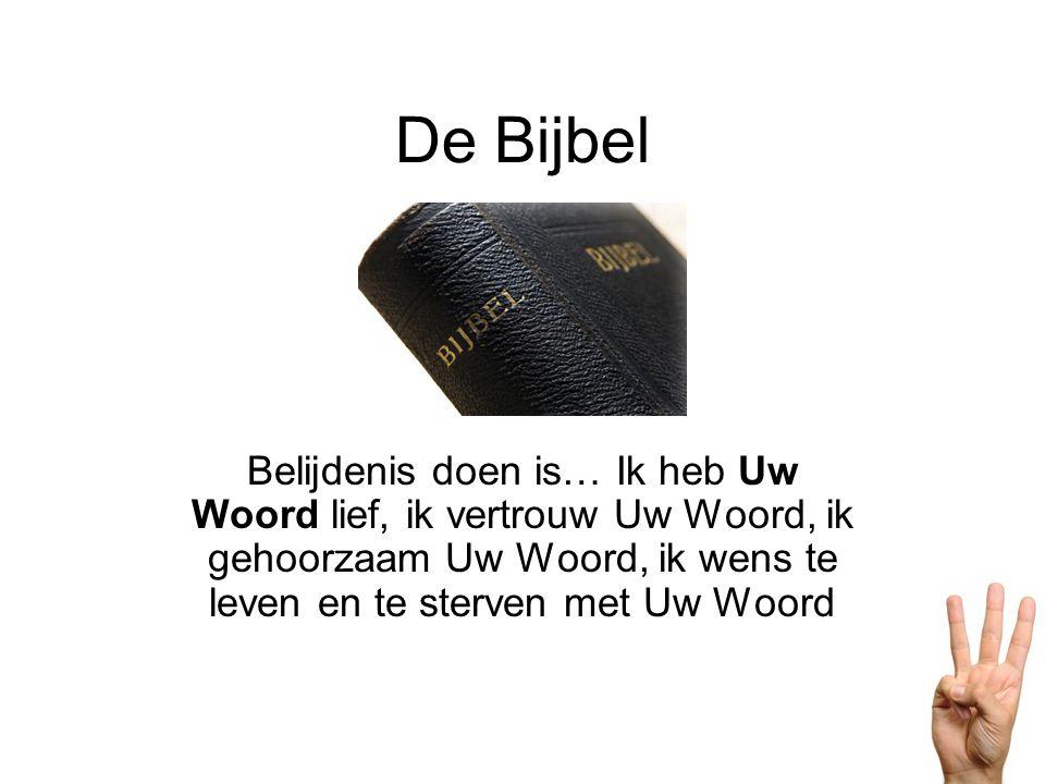 De Bijbel Belijdenis doen is… Ik heb Uw Woord lief, ik vertrouw Uw Woord, ik gehoorzaam Uw Woord, ik wens te leven en te sterven met Uw Woord