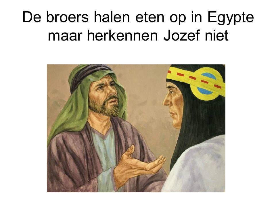 De broers halen eten op in Egypte maar herkennen Jozef niet