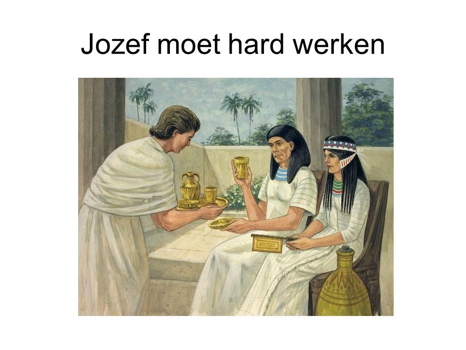 Jozef moet hard werken