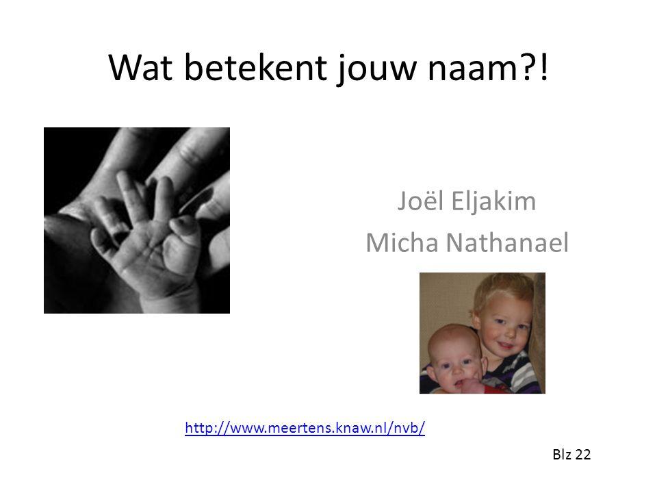 Wat betekent jouw naam?! Joël Eljakim Micha Nathanael http://www.meertens.knaw.nl/nvb/ Blz 22