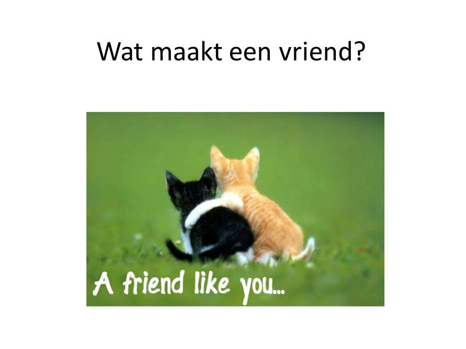 Wat maakt een vriend?