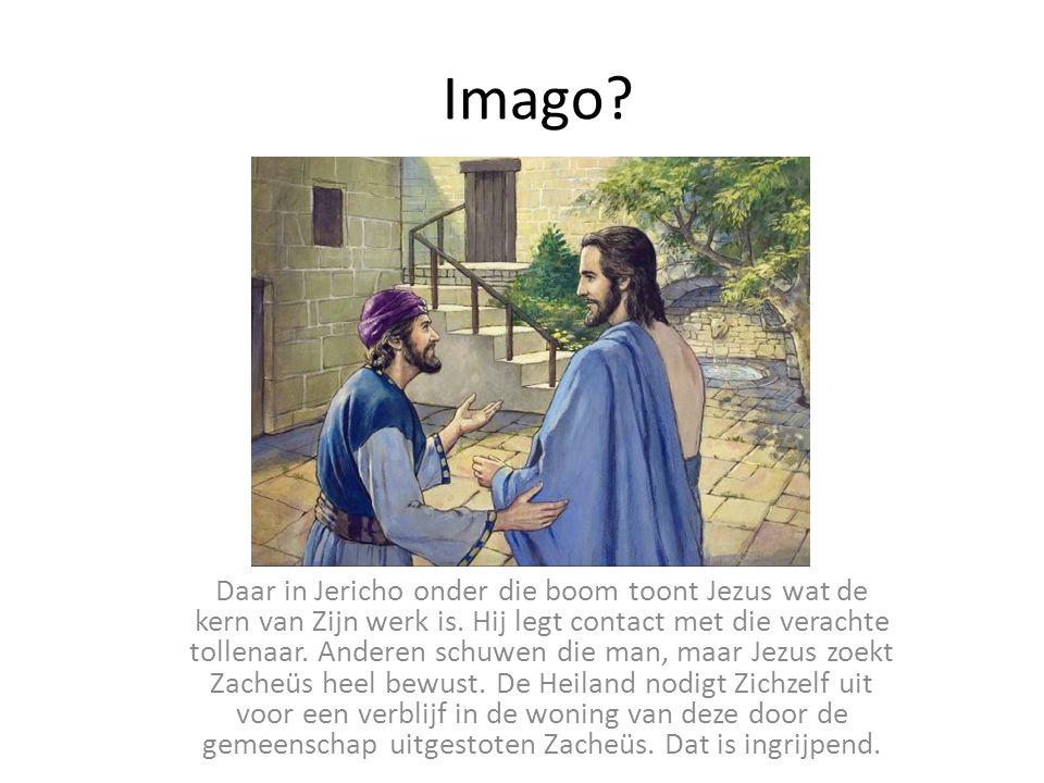 Imago.Daar in Jericho onder die boom toont Jezus wat de kern van Zijn werk is.