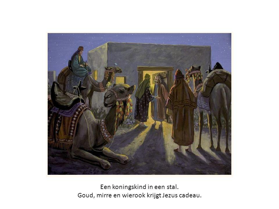 Een koningskind in een stal. Goud, mirre en wierook krijgt Jezus cadeau.