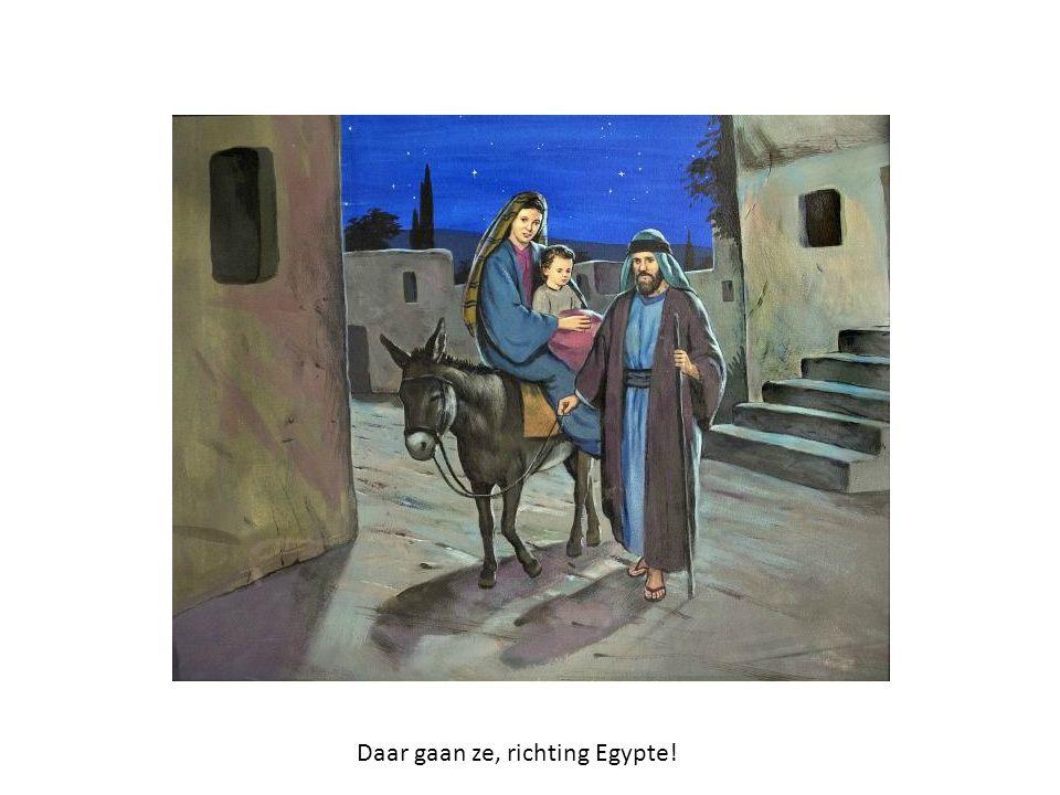 Daar gaan ze, richting Egypte!