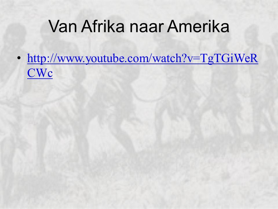 Driehoekshandel Uit Europa met geweren en kralen Uit Afrika met slaven Vanuit Amerika Amerikaanse producten.