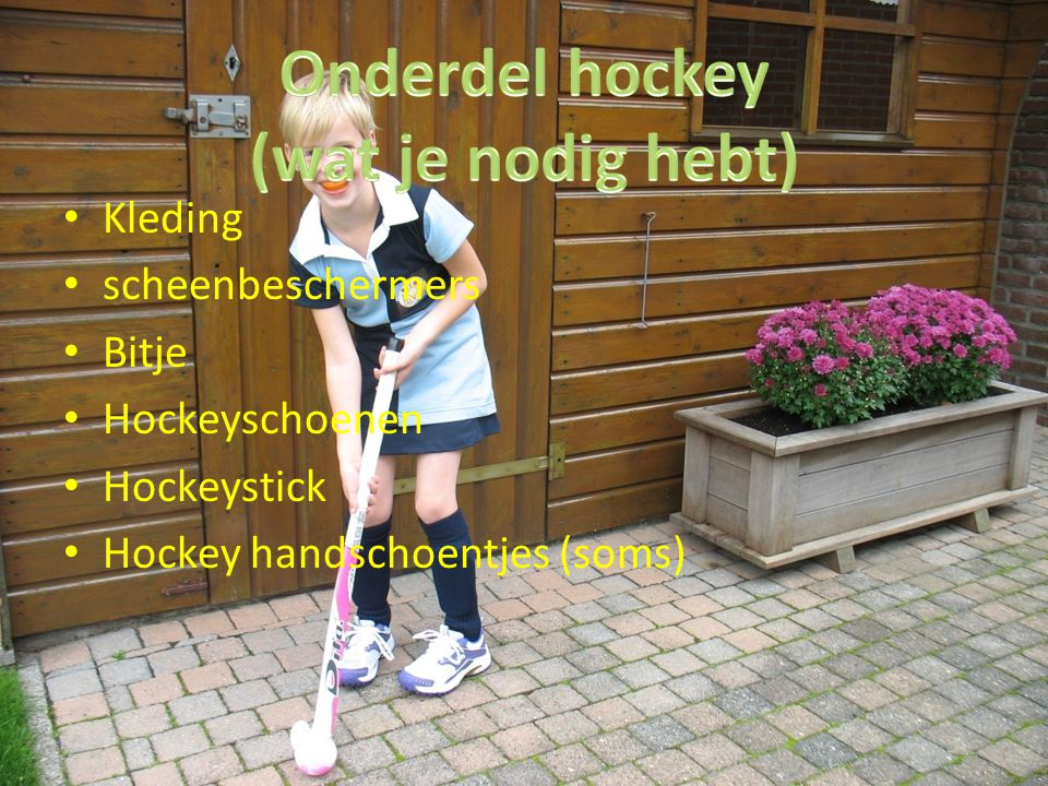 Kleding scheenbeschermers Bitje Hockeyschoenen Hockeystick Hockey handschoentjes (soms)