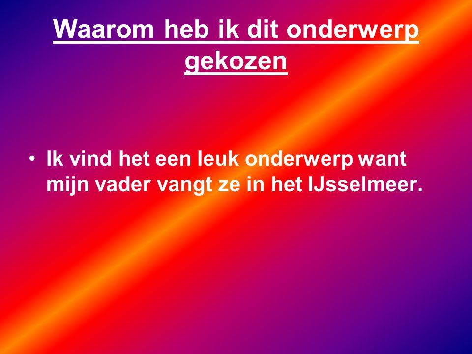 Waarom heb ik dit onderwerp gekozen Ik vind het een leuk onderwerp want mijn vader vangt ze in het IJsselmeer.