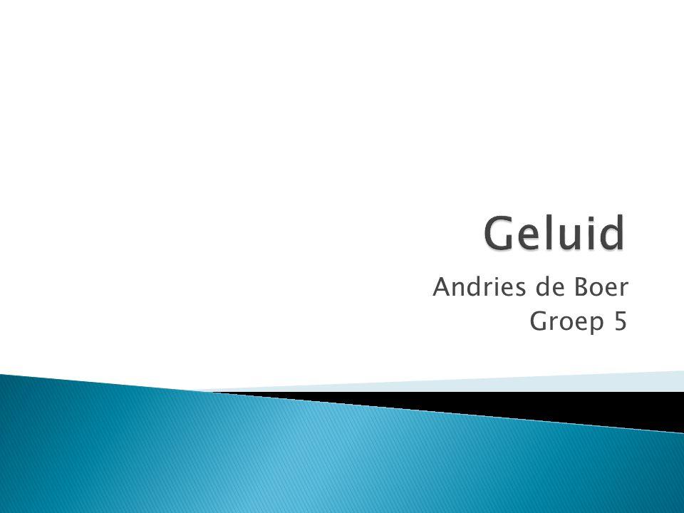 Andries de Boer Groep 5