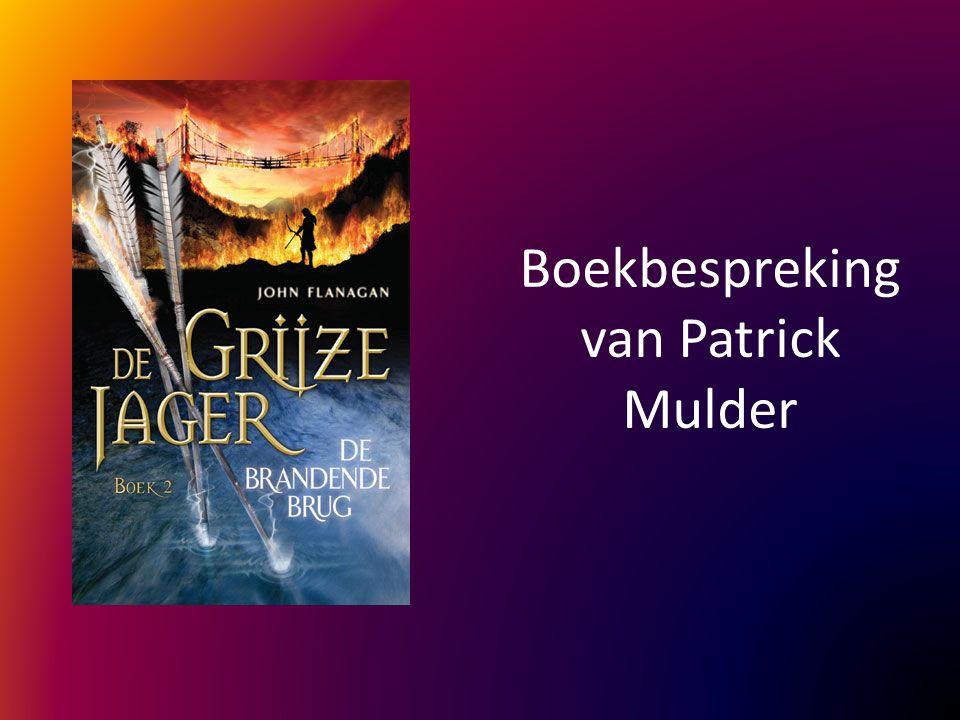 Boekbespreking van Patrick Mulder
