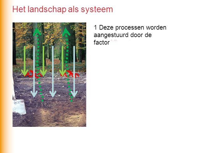 1 Deze processen worden aangestuurd door de factor klimaat. 2 Deze processen leiden Alleen tot verkleuring van de grond wanneer ze langdurig plaatsvin