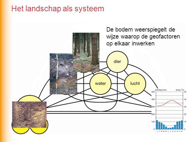 De bodem weerspiegelt de wijze waarop de geofactoren op elkaar inwerken Het landschap als systeem