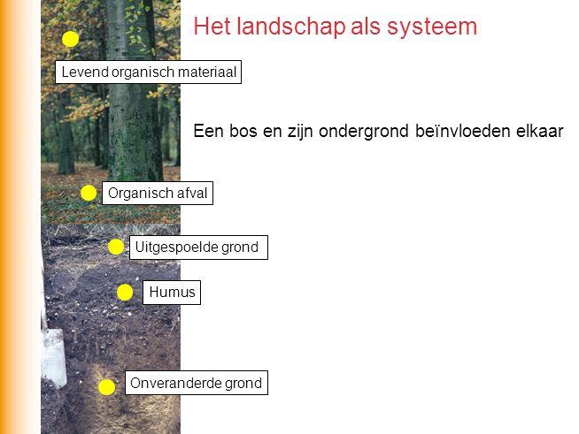 Een bos en zijn ondergrond beïnvloeden elkaar Het landschap als systeem Organisch afval Levend organisch materiaal Humus Onveranderde grond Uitgespoel