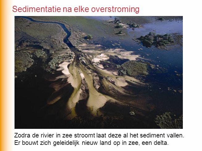 Zodra de rivier in zee stroomt laat deze al het sediment vallen. Er bouwt zich geleidelijk nieuw land op in zee, een delta. Sedimentatie na elke overs