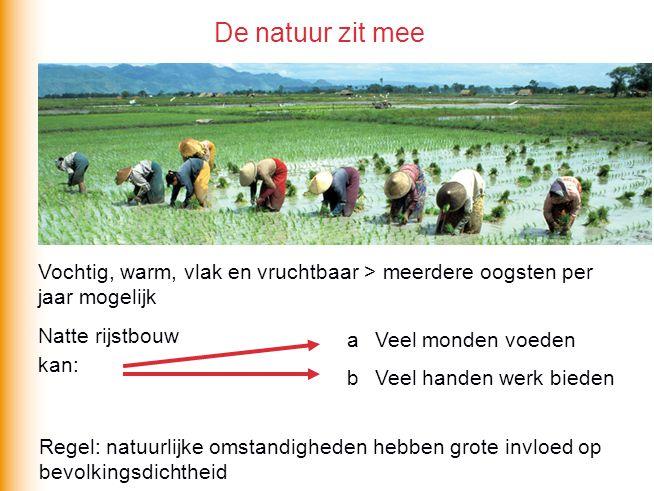 De natuur zit mee Vochtig, warm, vlak en vruchtbaar > meerdere oogsten per jaar mogelijk Natte rijstbouw kan: a Veel monden voeden b Veel handen werk