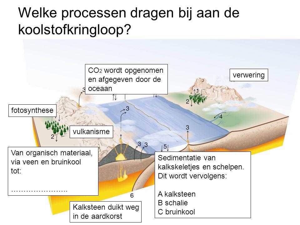 fotosynthese Van organisch materiaal, via veen en bruinkool tot: ………………….. vulkanisme verwering Kalksteen duikt weg in de aardkorst Sedimentatie van k