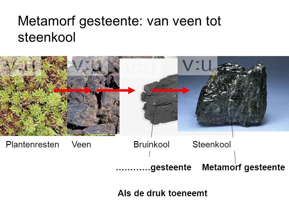 …………gesteenteMetamorf gesteente Als de druk toeneemt PlantenrestenVeen BruinkoolSteenkool Metamorf gesteente: van veen tot steenkool