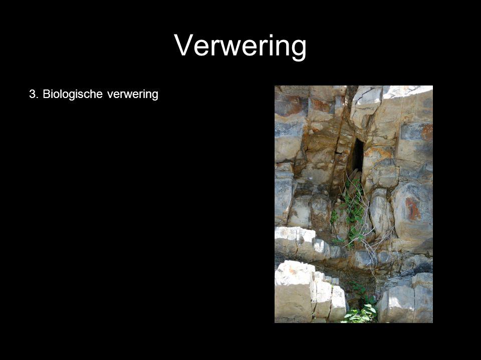 Verwering B.