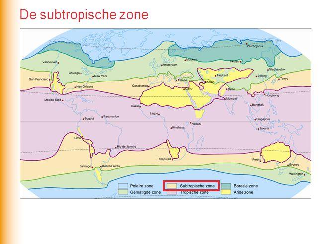 De subtropische zone