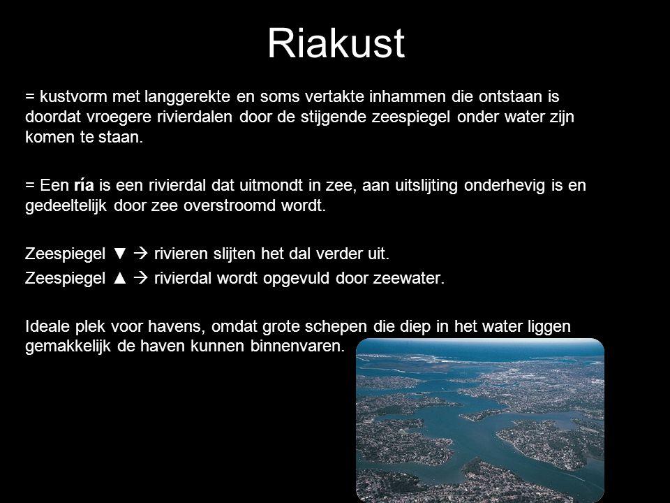 = kustvorm met langgerekte en soms vertakte inhammen die ontstaan is doordat vroegere rivierdalen door de stijgende zeespiegel onder water zijn komen