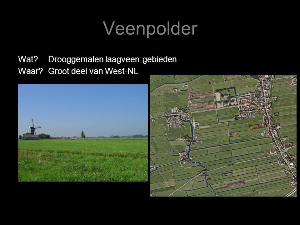 Veenpolder Wat?Drooggemalen laagveen-gebieden Waar?Groot deel van West-NL