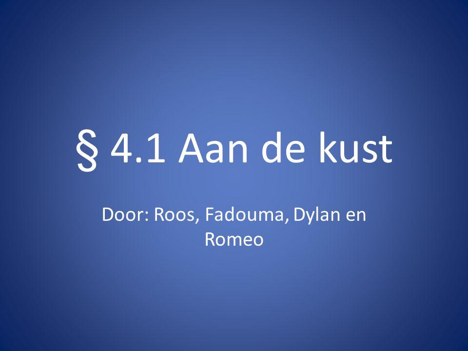 § 4.1 Aan de kust Door: Roos, Fadouma, Dylan en Romeo