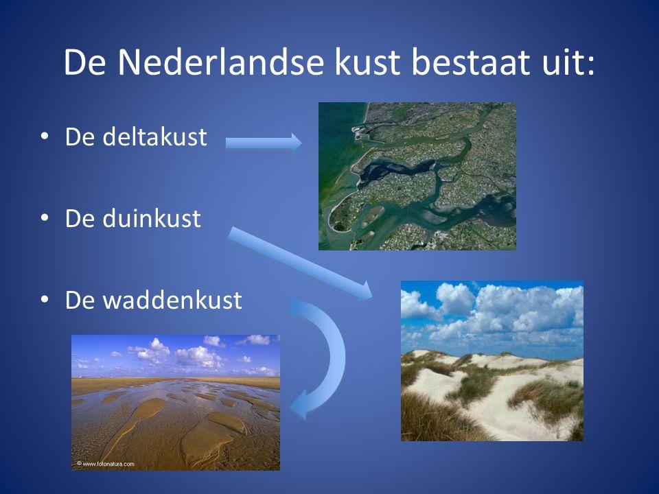 De Nederlandse kust bestaat uit: De deltakust De duinkust De waddenkust