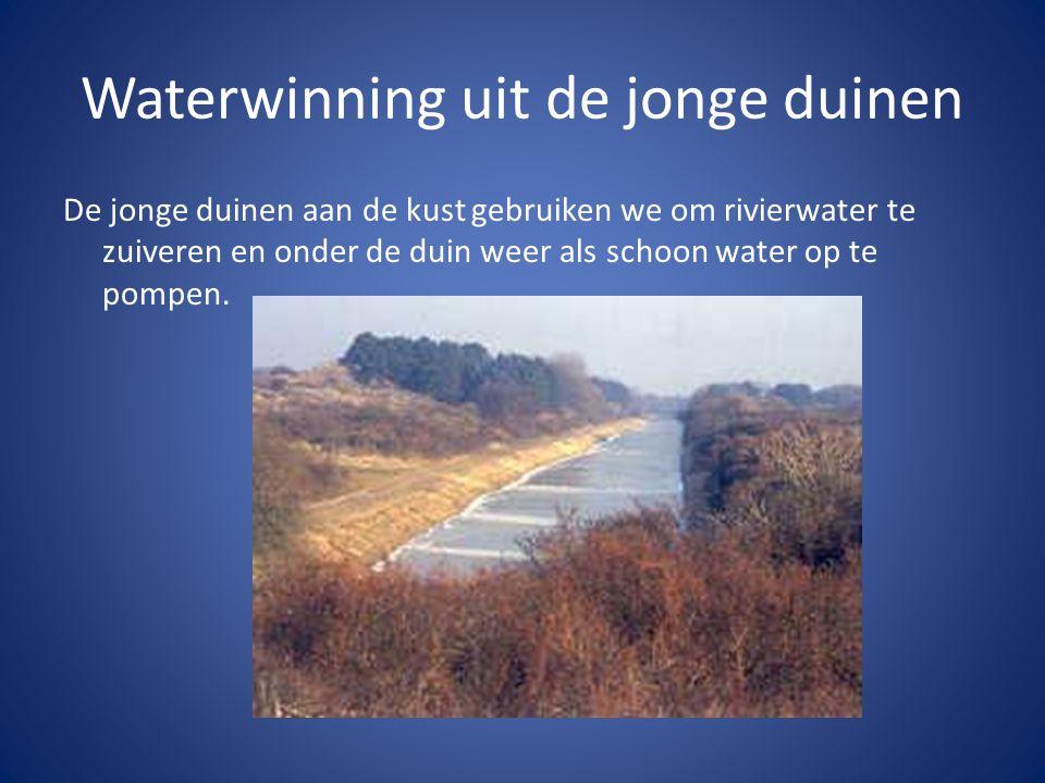 Waterwinning uit de jonge duinen De jonge duinen aan de kust gebruiken we om rivierwater te zuiveren en onder de duin weer als schoon water op te pomp